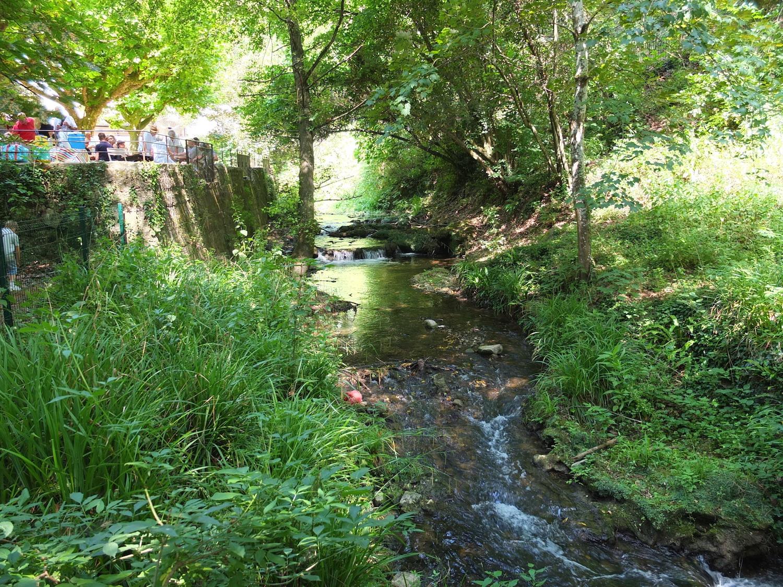 Rivière pique-nique